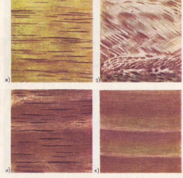Текстура шпона